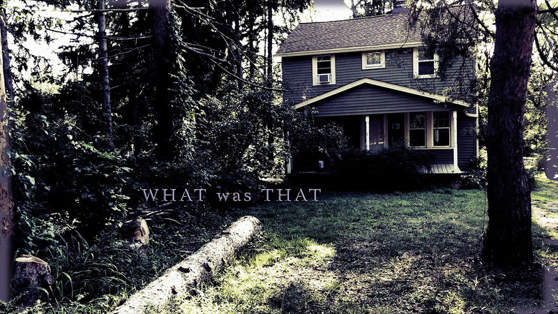 What was That-FRFF-Short-film-festival-2021-poster